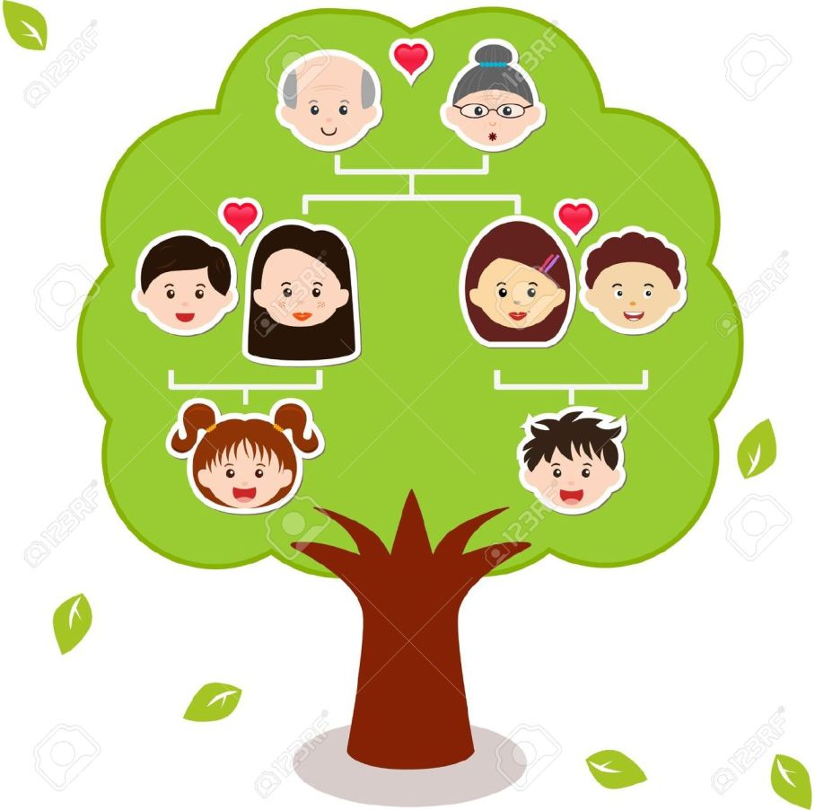 14015432-icons-family-tree-a-diagram-on-a-genealogical-tree-isolated-on-white-background-stock-vector