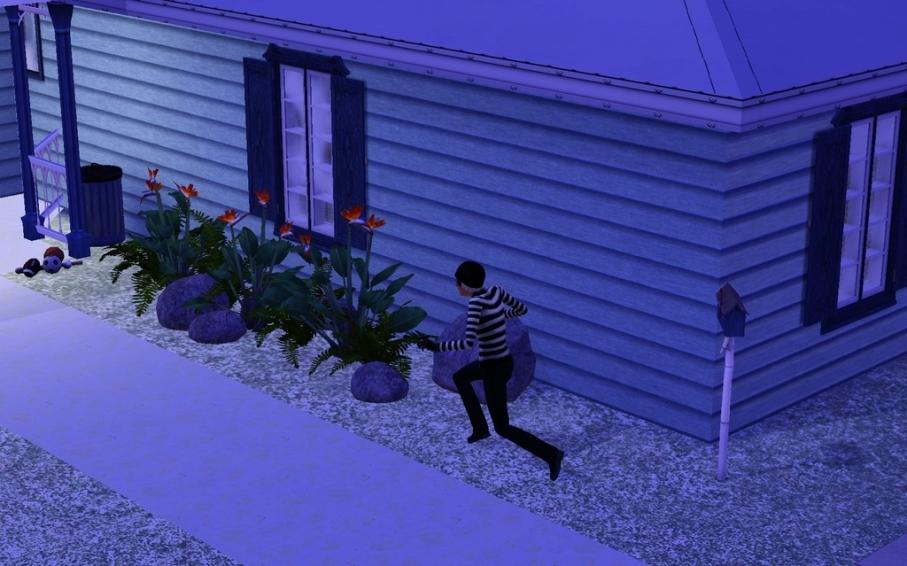burglar_zpsl3v7ucbz