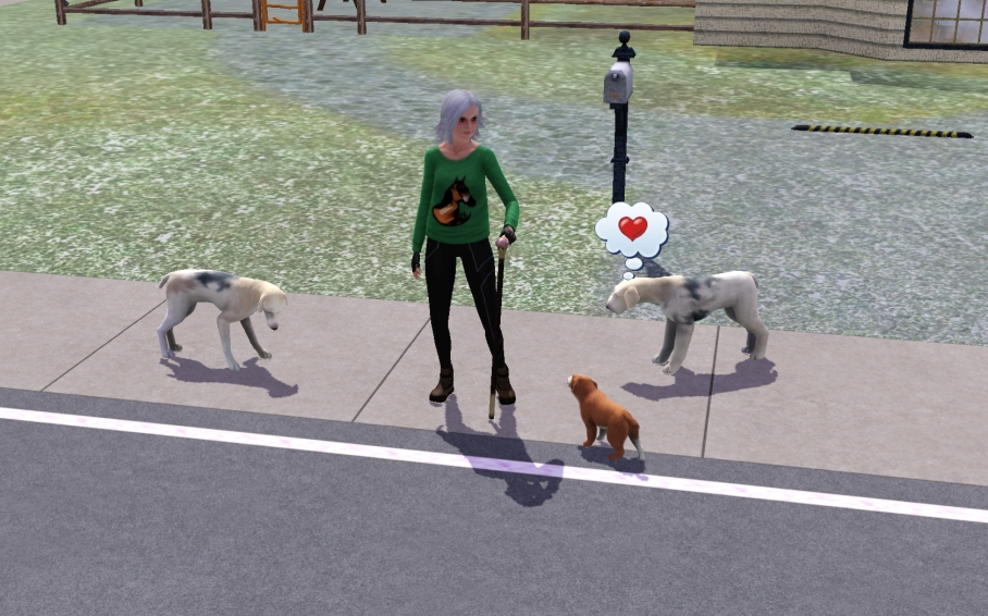 Rhoda and Dogs