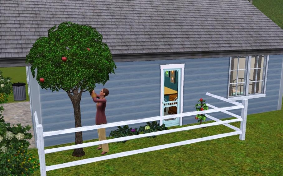 RR Gardening